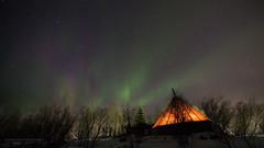 The Arctic Night Sky (Normann Photography) Tags: auroraborealis lavvo cold darkseason nightsky nordlys orange stars tent trees troms troms northernlights northernnorway wow dogsledding thebucketlist dad travel