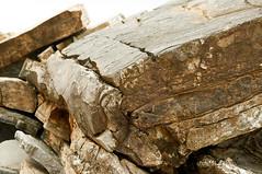 paiaundi_JPP8080 (ptxjp) Tags: ocan nature nikon d300 captureone geologie pyrnes roche