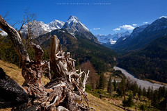 Spring View (wende60) Tags: mountains spring roots valley alps karwendel austria hike outdoor nature