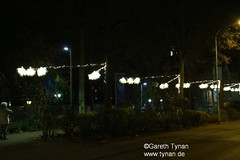 s161126c_0163+_EisBlumen (gareth.tynan) Tags: iceflowers eisblumen weihnachtsbeleuchtung eigenbauartpeople entwerfbrigittegrausamtynan langen romoratinanlage