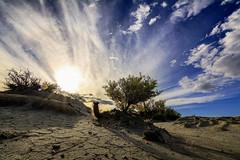 sequa (Mauro Esains) Tags: patagonia arbustos malaspina espinas cerros vegetal plantas cielo nubes grietas sequa arcilla contraluz piedras campo ramas cactus viento sol paisaje aire libre nikon