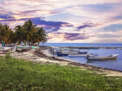 Saie Bay