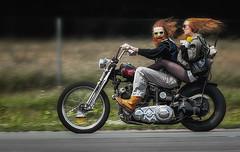 Lebensfreude (ellen-ow) Tags: beschleunigungsrennen motorsport oldtimer motorrad motorcycle harleydavidson bike person mensch fun