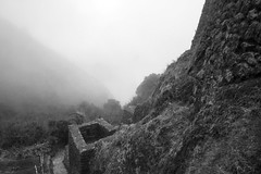 valley of the incas (sophs123.) Tags: inca trail hiking camino machu picchu cuzco cusco peru south america latin latinoamerica sudamerica mountains landscape archaeology ruins bw blackandwhite mist canon canon400d travel summer
