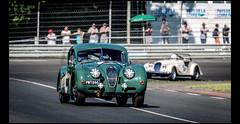 Jaguar XK 140 FHC (1955) (Laurent DUCHENE) Tags: peterauto lemansclassic 2016 bugatti jaguar xk 140 fhc