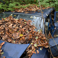 DSC_0223 v2 (collations) Tags: ontario mcleansautowreckers autowreckers wreckers automobiles autos abandoned rockwood derelict junkyards autograveyards carcemeteries