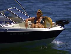 Front Seat (swong95765) Tags: woman bikini dog bow boat river cruise boating tan tanning sunshine