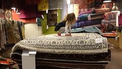 The magic carpet 2016 (anneke_vermeulen) Tags: carpet magic barendrecht