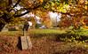 Dunsford Autumn 4 (chris-parker) Tags: river teign devon steps bridge dunsford stepping stones village autumn