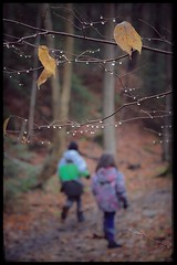 Youth (Note-ables by Lynn) Tags: hiking outdoors nature trails raindrops fall autumn children brucetrail