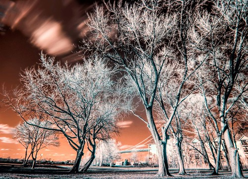 """Having a bit of play with an infrared filter.  Kept the reddish hue instead of channel swapping.  Definitely different.  Be interested to hear what you folks think • <a style=""""font-size:0.8em;"""" href=""""http://www.flickr.com/photos/76866446@N07/31325475446/"""" target=""""_blank"""">View on Flickr</a>"""