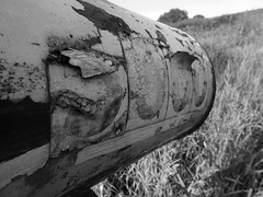 Mailbox atop Fire Hydrant B&W (Wits End Photography) Tags: old blackandwhite bw white plant black green texture nature monochrome field grass lines metal mailbox rural america circle landscape outside blackwhite illinois bush rust midwest peeling paint exterior view post mail natural symbol outdoor decay country rustic lawn stripe scenic rusty location pale line wear ring number firehydrant faded american hedge round worn figure oxidation weathered curve shape disc picturesque grounds address corrosion turf cracked bleached sod circular faint shrubbery corroded edwardsville discolored