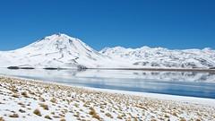Miscanti Lake