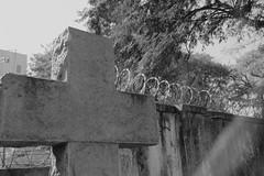Consolação (Marcelo Pulido) Tags: cruz cemitério religião farpado