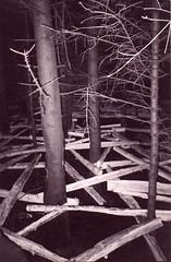 026 (fjordaan) Tags: lakes 1999 scanned