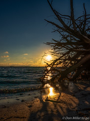 Golden Hour (DonMiller_ToGo) Tags: sunset nature landscape seascapes florida sunsets g5 hdr goldenhour onawalk 5xp hdrphotography 5exposures sunsetmadness sunsetsniper