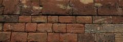 Mur (Carahiah) Tags: mur grès briques citadelle bitche citadelledebitche