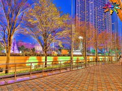 Tokyo=161 (tiokliaw) Tags: world city blue trees friends holiday colour reflection travelling beautiful beauty festival japan digital photoshop buildings wonderful garden island tokyo interestingness interesting fantastic nikon scenery holidays colours awesome blossoms perspective images parade walkway winner greatshot imagination sensational digitalcamera recreation greetings colourful railing dslr joyful discovery hdr finest overview joyride creations infocus addon highquality inyoureyes teamworks digitalcameraclub supershot recreaction hellobuddy inyoureye iloveyourart mywinners worldbest anawesomeshot colorphotoaward aplusphoto flickraward almostanything goldstaraward thebestofday flickrlovers sensationalcreations blinkagain burtalshot