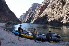 Grand Canyon 2015 647