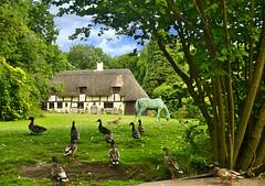 Rural Idyll, England, UK (Beardy Vulcan) Tags: summer england horse house bird animal june statue bronze rural boat canal duck cottage hampshire solstice thatch mallard idyll watercraft narrowboat venetia summersolstice 2015 basingstokecanal johnpinkerton