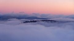 Winter (denismartin) Tags: blue winter sunset sun white snow france tree forest ngc sunsetlight lorraine vosges vogesen bassesurlerupt denismartin piquantepierre vosgesmountain