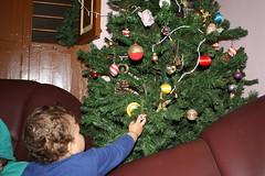 IMG_4605 (SorenDavidsen) Tags: hans mithra tirupati juletr