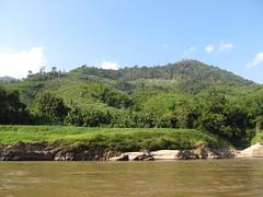 """Première journée de bateau sur le Mékong entre Houeisai et Pakbeng <a style=""""margin-left:10px; font-size:0.8em;"""" href=""""http://www.flickr.com/photos/127723101@N04/23496772179/"""" target=""""_blank"""">@flickr</a>"""