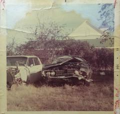 '69 Cougar (stevenbr549) Tags: 1969 yard vintage photo junk mercury crash wreck salvage cougar wrecked