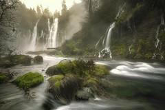 Burney Falls, CA (wesome) Tags: redding burneyfalls burney mcarthurburneyfalls