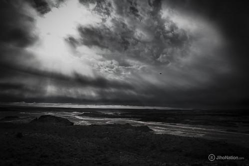 JihoNation-jiho-sohn-baltimore-photography-0005-IMG_8518 petrified-forest-arizona-national-park