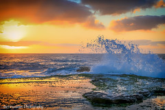 Splash! (darrinwalden Photography) Tags: