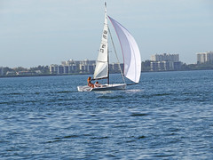 A Good Day for Sailing (soniaadammurray - OFF) Tags: digitalphotography blue mondayblues sailing boating sea land sky architecture sports trees buildings sunlight
