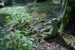 Hakone006 (Kosei.S) Tags: nikon d800 japanese japan kanagawa hakone temple stone statue buddha