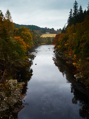 "River Findhorn Autumn View • <a style=""font-size:0.8em;"" href=""http://www.flickr.com/photos/26440756@N06/30037014104/"" target=""_blank"">View on Flickr</a>"