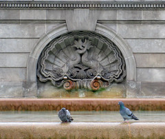 Pigeons at the fountain - Barcelona (Monceau) Tags: barcelona shell dolphins stone relief sculpture pigeons water