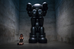 KAWS (djgreddy00) Tags: sonya7ii sonyalpha sony images zeiss1635 zeiss zeiss1635mm kaws modern art museum fortworth