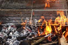 16029 - Fuoco (Diego Rosato) Tags: fuoco fire grill griglia barbecue bbq nikon d700 85mm gimp