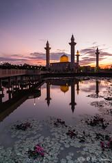 Bukit Jelutong Mosque (Md Farhan's Gallery) Tags: mosque fujifilm xt1 fujinon 1024mm raymaster travel lake reflection sunrise nationalgeographic lensamalaya light ray flower water malaysia selangor bukitjelutong masjidbukitjelutong