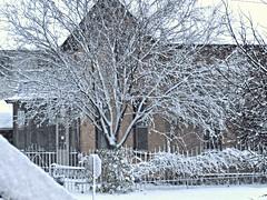 First snowfall seen from South window 3 (~nevikk~) Tags: snow windowshot firstsnowfall kevinkelly neighbors