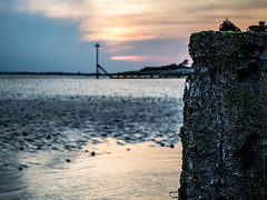 Waiting (Caroline Oades) Tags: dusk wittering westsussex groyne beach sand water seaside strand coast 129366 08052016