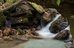 P1150116 (TallGrass-IA) Tags: edgewood iowa unitedstates us panasonic g6 1235 lumix micro43 microfourthirds waterfalls longexposure hiking outdoor nature moss