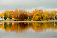 peaceful lake  (T.ye) Tags: colour fall autumn peacefull reflection people landscape trout lake vancouver outside outdoor