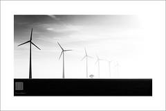 Terre de Somme (Emmanuel DEPARIS) Tags: somme picardie haut de france eoli eolienne eoliene vent emmanuel deparis nikon d810 paysage landscape
