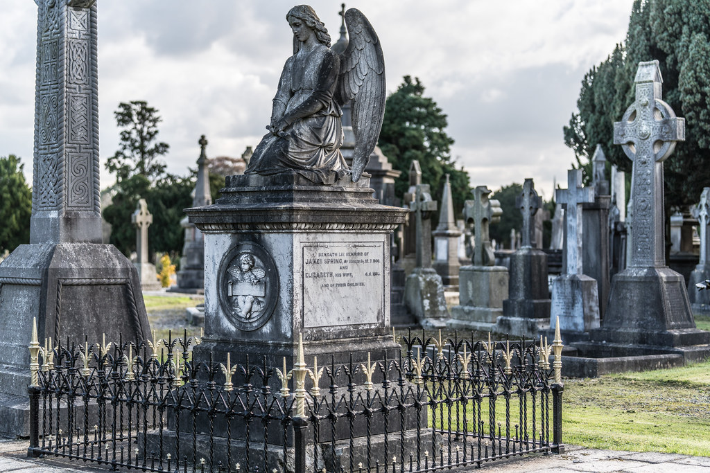 A QUICK VISIT TO GLASNEVIN CEMETERY[SONY F2.8 70-200 GM LENS]-122071