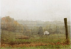Morning Mist (raewillow) Tags: fog october rural farmhouse ohio