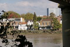 The City Barge (jiving John) Tags: wisy walk riverthames richmond barnes