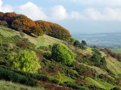 Autumn View - Derbyshire (linda.addis) Tags: odc ourdailychallenge warmcolours