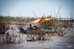 Femme rparant quelques tissus en attendant le retour de la pche sur les rives du Tonl Sap (Aurlie Jouanigot) Tags: lac tonlsap pilotis floatingvillage people cambodge villageflottant lake maison northouest cambodia tonlsap