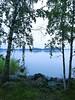 After summer rain (hennatin) Tags: summer rain lauttasaari helsinki nature eveningwalk