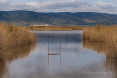 Tablas de Daimiel (Carhove) Tags: water agua seascape nature naturaleza minimalism minimal tablasdedaimiel otoo autumn autunno clouds nubes reflections reflejos